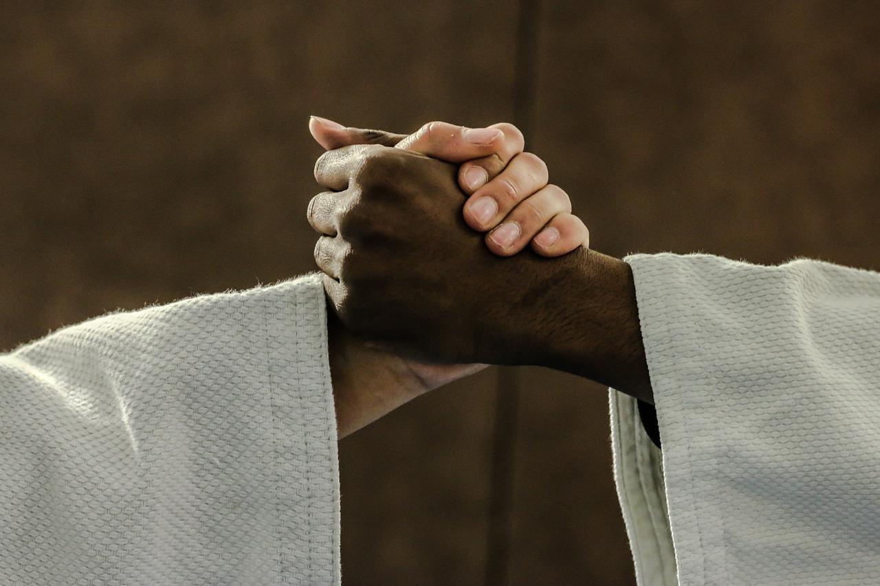 Judo sainte marie la mer 66
